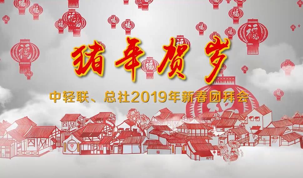 中轻联、总社2019年新春团拜会在京举行