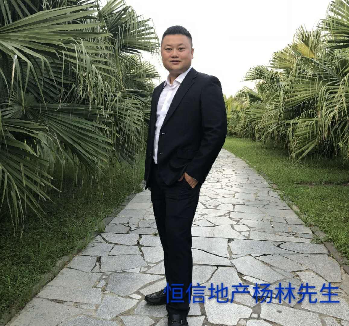 青年企业家杨林:用燃烧的青春铸就创业之梦