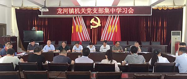 丰都县龙河镇:机关党支部组织党员开展集中学习活动