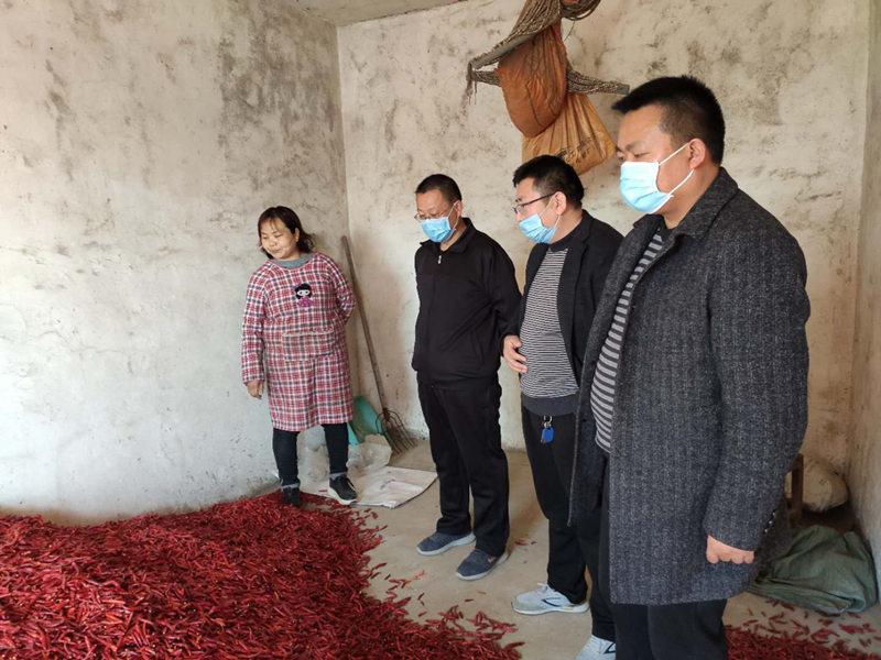 河南長(chang)葛:南席鎮產業扶貧解民憂