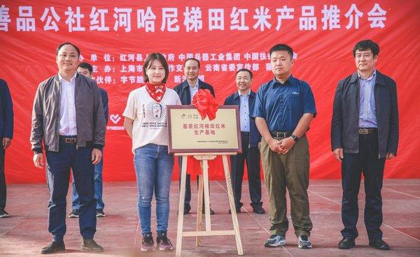 喜茶啟動紅米生產基地揭牌儀式 云南紅河扶貧項目取得階段性成果