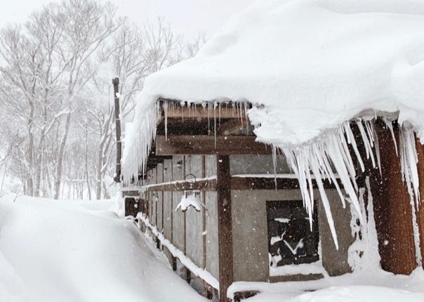 拿上雪橇,邂逅梦幻雪地里的冰雪奇缘插图(5)