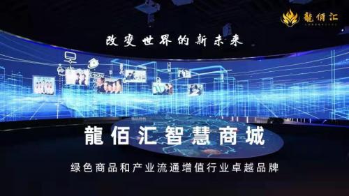 龍佰汇智慧商城,引领消费激励创新,提升商品流通品质,布局大健康生态系统。