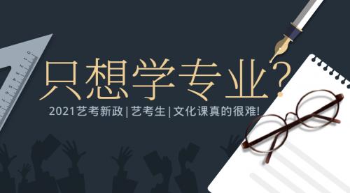 2021年河北省艺考 文化课考情分析及备考指导